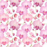 Nahtloses Muster des Aquarells mit Orchideen Stockfotos