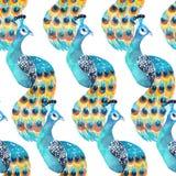 Nahtloses Muster des Aquarells mit Pfaus auf dem weißen Hintergrund Stockfotos