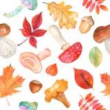 Nahtloses Muster des Aquarells mit Pilzen, fizalis, Eichel, Haselnüssen und bunten Blättern stock abbildung