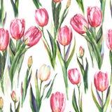 Nahtloses Muster des Aquarells mit roter und weißer Tulpe blüht stock abbildung