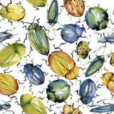 Nahtloses Muster des Aquarells von den hellen Käfern gepresst Lizenzfreie Stockfotos