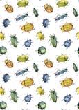 Nahtloses Muster des Aquarells von den hellen Käfern gepresst Lizenzfreies Stockbild