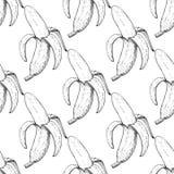 Nahtloses Muster des Bananenvektors Lokalisierter Hand gezeichneter Schalengegenstand Lizenzfreie Stockbilder