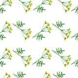 Nahtloses Muster des Blumenaquarells Stockfoto