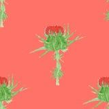 Nahtloses Muster des Carduusaquarells, eigenhändig gemalt, Vektorbild Stockfotos