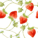 Nahtloses Muster des Erdbeeraquarells Stockfotos