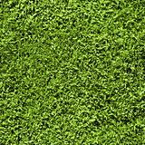Nahtloses Muster des Grases Stockbilder