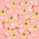 Nahtloses Muster des handgemalten Aquarells mit gelber und roter Malve blüht Abutilon auf rosa Hintergrund Stockbild