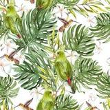 Nahtloses Muster des hellen Aquarells mit tropischen Blättern und Vögeln Lizenzfreies Stockfoto
