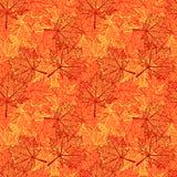Nahtloses Muster des Herbstblattes Lizenzfreie Stockfotos