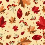 Nahtloses Muster des Herbstes Stockbild