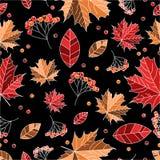 Nahtloses Muster des Herbstes Lizenzfreie Stockfotos
