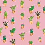 Nahtloses Muster des Kaktus Lizenzfreie Stockbilder