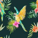 Nahtloses Muster des Keilschwanzsittichs Palmblätter und tropisches Stockfoto