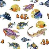 Nahtloses Muster des Meeresflora und -fauna-Aquarells mit tropischen Fischen Lizenzfreies Stockfoto