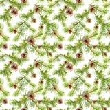Nahtloses Muster des neuen Jahres mit Niederlassungen des Weihnachtsbaums Vektor Abbildung