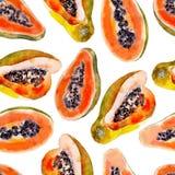 Nahtloses Muster des Papayaaquarells Helle tropische Frucht lokalisiert Stockbild