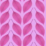 Nahtloses Muster des Purpurs verlässt auf einem rosa Hintergrund Stockfoto