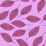 Nahtloses Muster des Purpurs verlässt auf einem rosa Hintergrund Lizenzfreie Stockfotografie