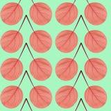 Nahtloses Muster des Rotes verlässt auf einem grünen Hintergrund Stockfoto