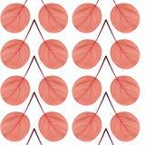 Nahtloses Muster des Rotes verlässt auf einem weißen Hintergrund Lizenzfreie Stockbilder