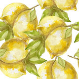 Nahtloses Muster des süßen saftigen Zitronenaquarells Stockfotografie