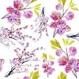 Kirschblüte-Blumen. Muster Stockfoto