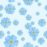 Nahtloses Muster des Sommers mit blauen Vergissmeinnichten Lizenzfreie Stockfotografie