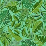 Nahtloses Muster des Sommers mit exotischem Laub Hintergrund mit Blättern von Dschungelbäumen und -palme verzweigt sich auf grüne stock abbildung