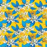 Nahtloses Muster des tropischen Blumensommers mit Plumeria blüht Palmblätter Stockfotos