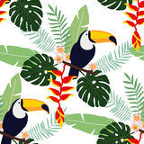 Nahtloses Muster des tropischen Dschungels mit Tukanvogel, heliconia und Plumeriablumen und Palmblätter, flaches Design, Stockfoto