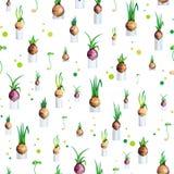 Nahtloses Muster des Vektorillustrations-Frühlinges mit Zwiebeln Lizenzfreie Stockfotografie