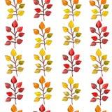 Nahtloses Muster des Vektors, Beschaffenheit, Druck mit Fallblättern auf dem transparenten Hintergrund Autumn Colors lizenzfreie abbildung