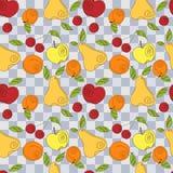 Nahtloses Muster des Vektors - frische Sommerfrüchte Stockfotografie