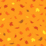 Nahtloses Muster des Vektors mit buntem Herbstlaub Stockfotos