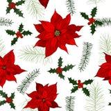 Nahtloses Muster des Vektors mit von Hand gezeichneten Weihnachtsanlagen Stockbilder