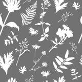 Nahtloses Muster des Vektors mit wild wachsenden Pflanzen stock abbildung