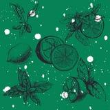 Nahtloses Muster des Vektors mit Zitrone und Minze Lizenzfreies Stockbild