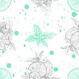 Nahtloses Muster des Vektors mit Zitrone und Minze Stockfoto
