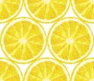 Nahtloses Muster des Vektors von den Zitronenscheiben Bereiten Sie für einen Text vor Lizenzfreies Stockbild
