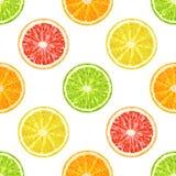 Nahtloses Muster des Vektors von den Zitrusfruchtscheiben Orange, Zitrone, Kalk Stockbilder