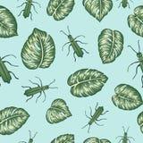 Nahtloses Muster des Vektors von grünen monsterra Blättern mit tropischen Wanzen auf blauem backgound lizenzfreie abbildung