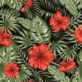 Nahtloses Muster des Vektors von grünen tropischen Blättern mit roten Hibiscusblumen auf schwarzem Hintergrund lizenzfreie abbildung