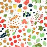 Nahtloses Muster des Vektors von hellen Beeren stock abbildung