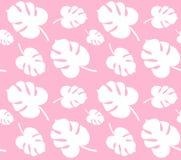 Nahtloses Muster des Vektors von weißen monstera Palmblättern lokalisiert auf rosa Hintergrund vektor abbildung