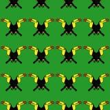 Nahtloses Muster des Vogel-Tukans Stockbild