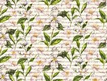 Nahtloses Muster des von Hand gezeichneten Aquarells mit Jasminblumen und -teeblättern auf dem weißen Hintergrund Stockbild