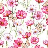 Nahtloses Muster des von Hand gezeichneten Aquarells mit rosa und weißem kosmea blüht mit Schmetterlingen stock abbildung