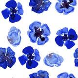 Nahtloses Muster des Watercolour mit blauer kleiner Mohnblume Stockfotografie