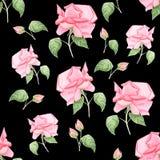 Nahtloses Muster des Weinleseaquarells mit den Knospen von Rosen und von wilden Blumen Natürliche botanische Illustration des Aqu stock abbildung
